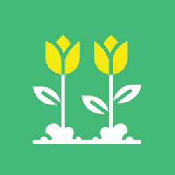 spring season icon: light green square with yellow tulips
